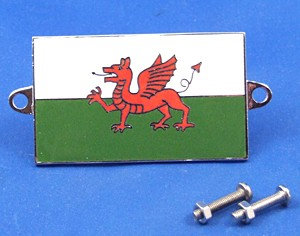 enamel nationality flag badge / plaque Wales